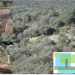 La Fundación Biodiversidad concede una ayuda a la Unidad de Modelización y Ecotoxicología de la Contaminación Atmosférica del CIEMAT para la realización del proyecto MODICO