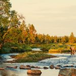 El sisu, la receta finlandesa para tener éxito en la vida