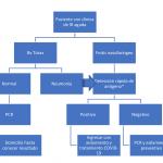 RECOMENDACIONES INSTITUCIONALES DOCUMENTO DE POSICIONAMIENTO DE LA SEIMC SOBRE EL DIAGNÓSTICO MICROBIÓLOGO DE COVID-19