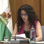 Inspección de Servicios Sociales ha realizado 33 actuaciones y ha propuesto 6 expedientes sancionadores durante la crisis del Covid-19