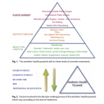 La pirámide de la salud estética